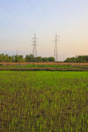 Dangerous high voltage electricity pole.  photo