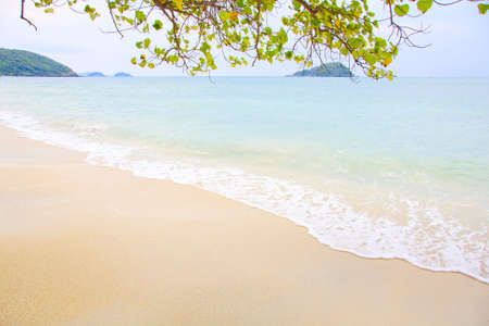 beach and tropical sea  Stock Photo - 12251701