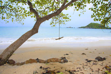 beach and tropical sea with trees and a swing. Stock Photo - 12251708