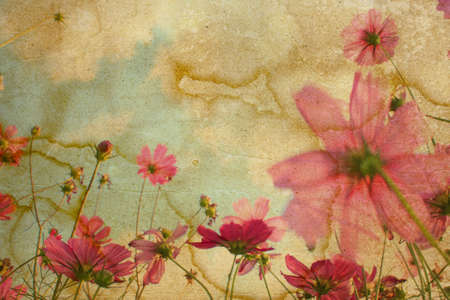 abrasion: old and worn flower paper texture background