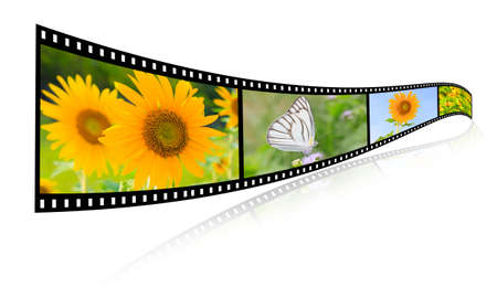 35mm 3d show images of flowers, butterfly video formats   photo
