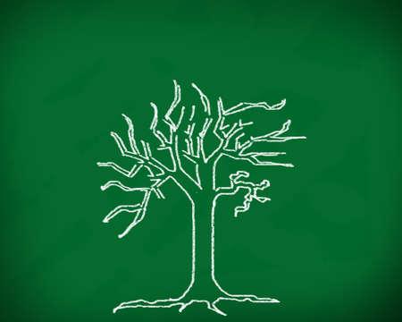 The tree on the blackboard  photo