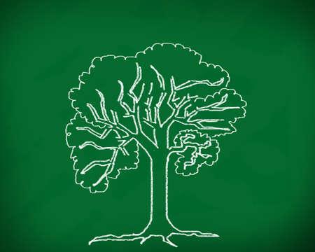 The tree on the blackboard Stock Photo - 12986145