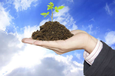 Tree in hand sky background Stock Photo - 13237167
