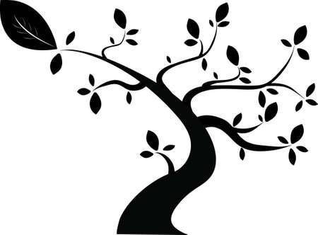 검은 나무 스톡 콘텐츠 - 13351861