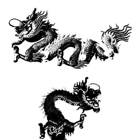 chinese new year dragon: Black Dragon vector Illustration