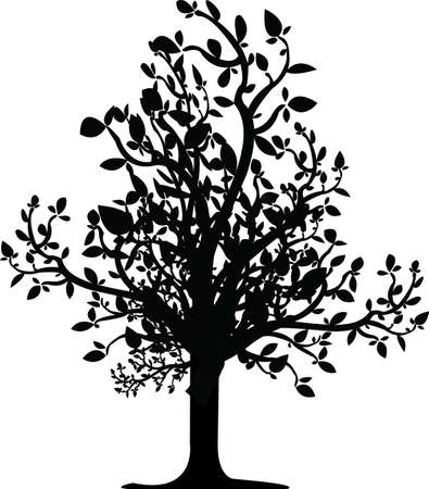 landscaped garden: tree