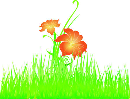 Flowers on the grass vector Stock Vector - 13619331