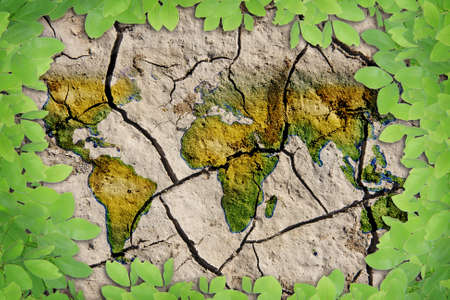 Leaves Dry soil background world photo