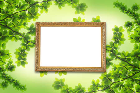 Frame on a background of leaves. photo