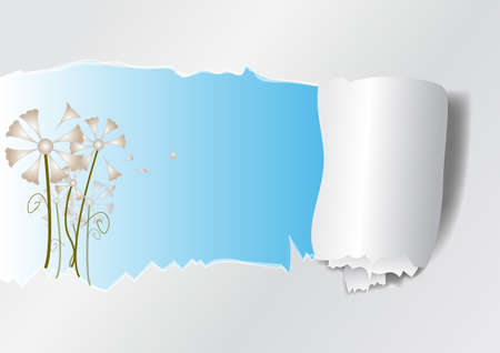 flowers and ripped paper  Vector illustration   Vector
