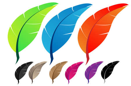 poet: Vector feather  Four variants of color   Illustration