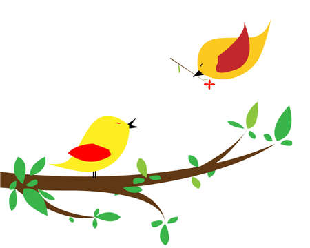 Nice beautiful birds in love  Isolated picture for Your design