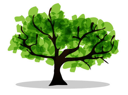 pollination: tree May be used as illustrations