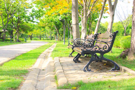 beautiful colorful autumn park in sunny day Stock Photo - 15008777