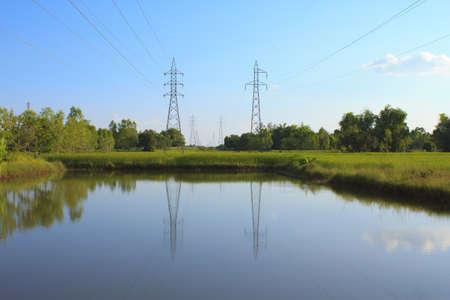 Poste eléctrico en el campo de arroz