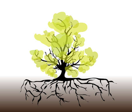 whole black tree with roots isolated white background vector  Vector