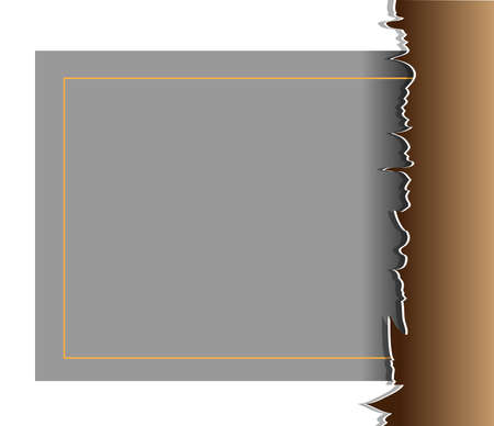 Torn paper Label May be used as background  Vector