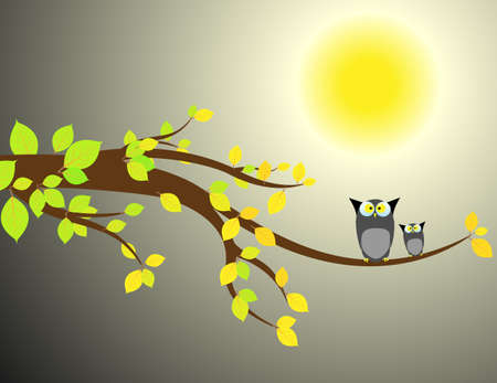 Family of owls sat on a tree branch at night  Vector