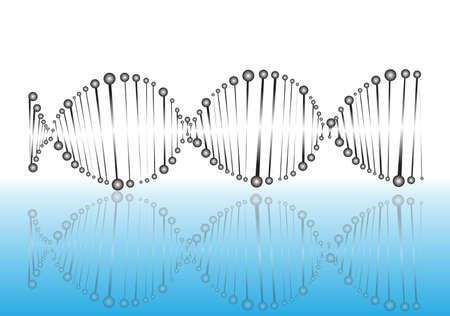 DNA molecule of spheres Stock Vector - 19498971