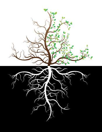 allegory: Tree illustration Illustration