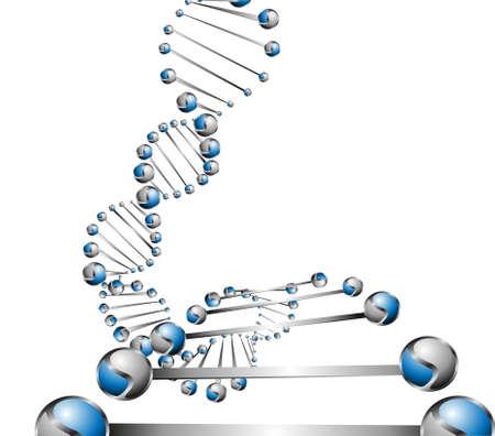 DNA molecule structure background  eps10 vector illustration  Stock Vector - 24056990