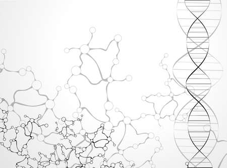macromolecule: DNA molecule structure