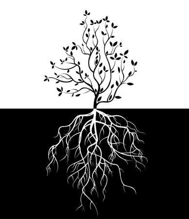 boom met wortels geïsoleerde witte achtergrond vector Stock Illustratie