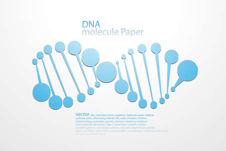 molecular DNA structure in 3D style, of planar elements  Vector