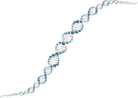 DNA molecule structure background  vector illustration  Vector