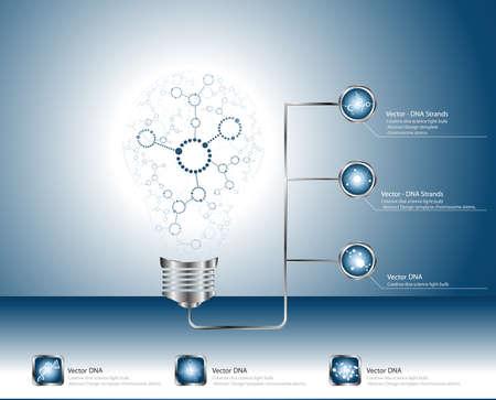 Creative science molecular DNA light bulb Abstract vector  Vector