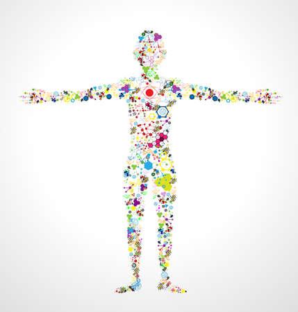 estructura: modelo de hombre de la molécula de ADN. Eps 10 Vectores