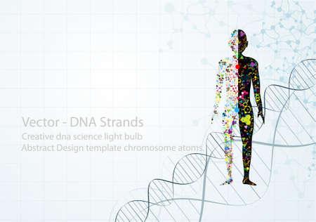 인간의 DNA EPS10의 분자 몸 개념 일러스트