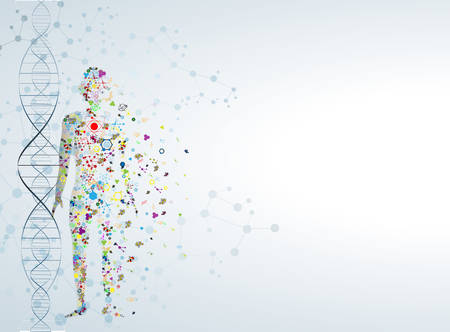 Concetto di corpo Molecola di DNA umano Archivio Fotografico - 37007211