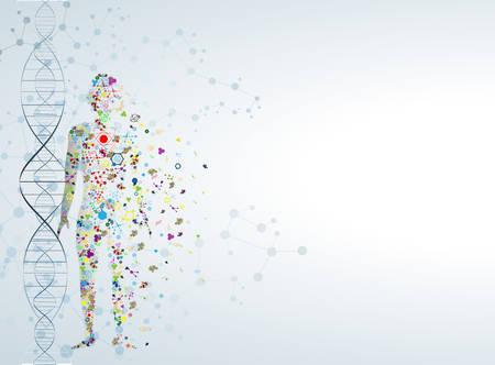 Cząsteczka koncepcja ciała ludzkiego DNA Ilustracje wektorowe