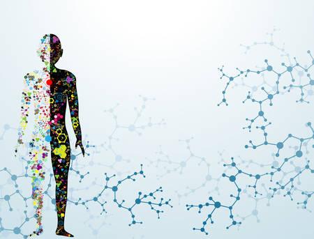 Molécula del concepto del cuerpo del ADN humano.