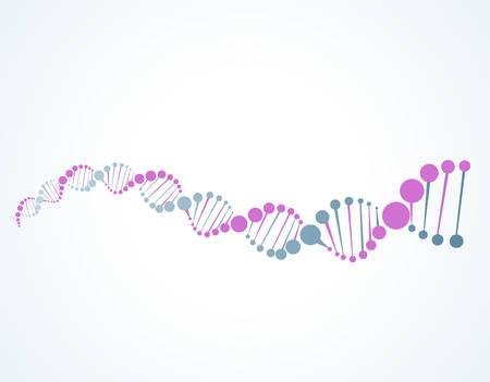 DNA molecular structure