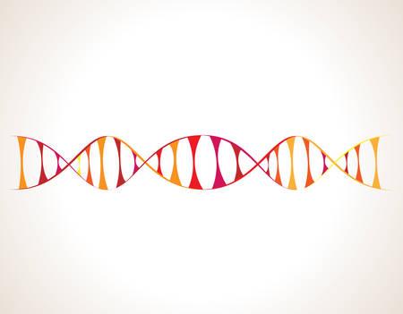 DNA 분자 구조 일러스트