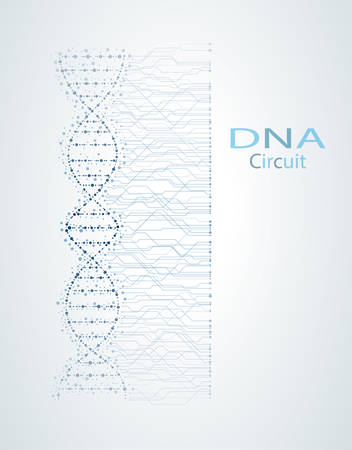 Genetic circuit concept, DNA, medical vector background 일러스트