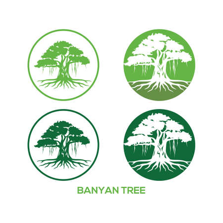 Tree vector illustrations, roots, mangrove tree VECTOR isolated. banyan logo concept for your business