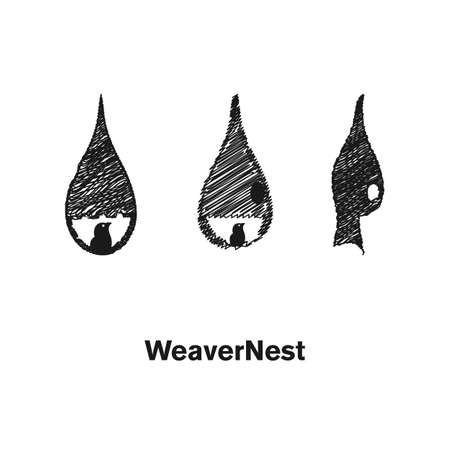 weave nest logo design template vector illustration.