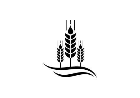 Wheat Ears Icon and Logo. For Identity Style of Natural Product Company and Farm Company. Agricultural symbols isolated on white background.