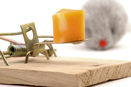 entrap: Close-up of cheese bait on a mousetrap with mouse in background.