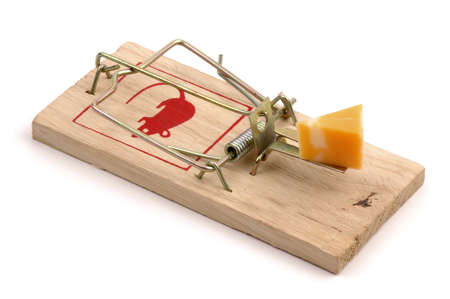 baited: Mousetrap baited with cheese on a white background.