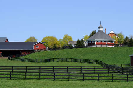 Tranquil scene of red barns on a horse farm. Reklamní fotografie
