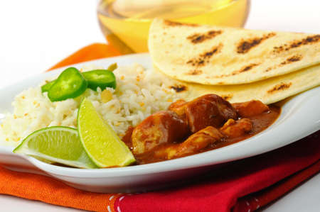 Mexican dinner of chicken with mole sauce and rice. Imagens - 6220504