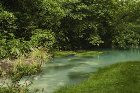 celeste: Chemicals contained within the waters of two rivers react to create the vivid blue color of Rio Celeste.