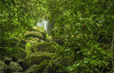 Fallen rocks at the base of a waterfall in a forest in Costa Rica. photo