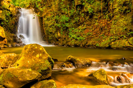 dappled: Dappled light on a waterfall and stream in a forest clearing in Costa Rica. Stock Photo