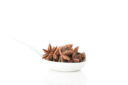 Whole star of anise presented in a white spoon with ample copy space.. Imagens